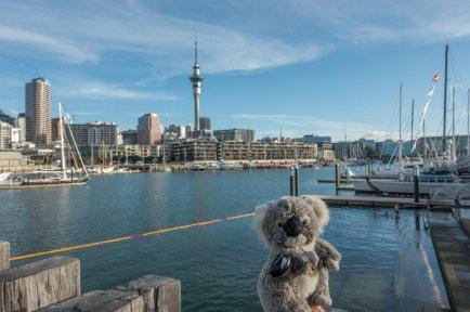 A Auckland, devant la Sky tower