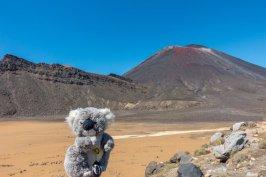 En rando à Tongariro devant un volcan