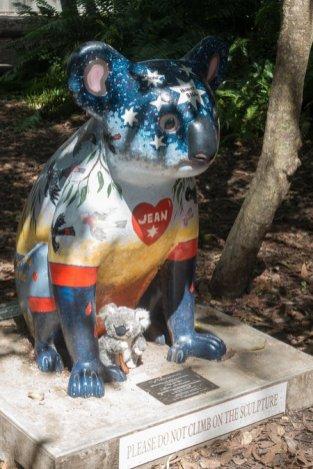 A l'hopital des koalas
