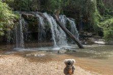 Devant une jolie cascade dans les alentours de Chiang Mai