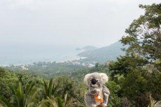 Arrivée sur les îles du Golfe de Thaïlande, je profite du panorama