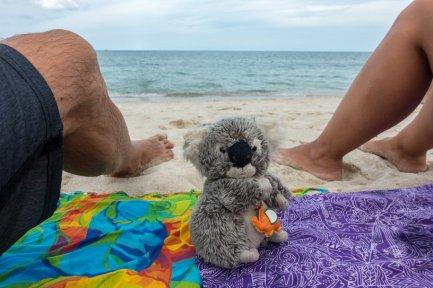 Sur une plage de Koh Samui avec mes compagnons de voyage