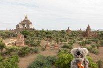 A Bagan devant les temples