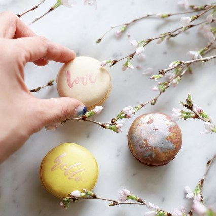 100% Edible paint macarons