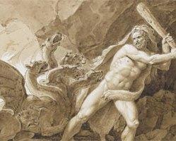 Herkules 40