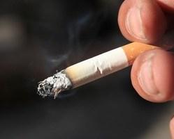 Palić tytoń 29