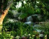 Rajski ogród 17