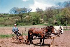 Znaczenie snu rolnik