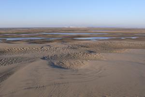 Znaczenie snu ruchome piaski