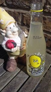 Even the gnome is eyeing up my fairtrade lemonade!