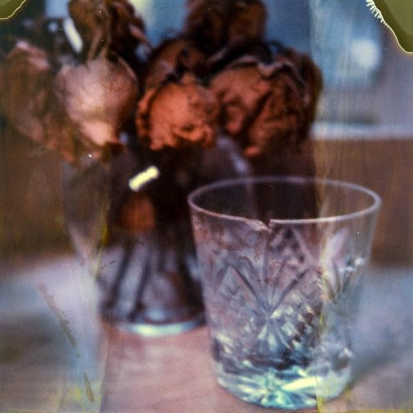 polaroid-glass-flowers006