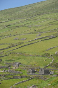Farms with Stone Fences