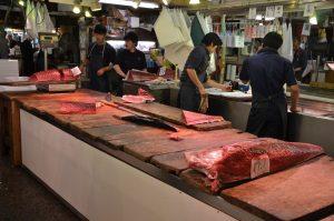 Tuna Fillets, Tsukiji Fish Market, Tokyo