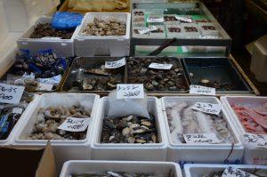 Assortment of Shellfish, Tsukiji Fish Market, Tokyo