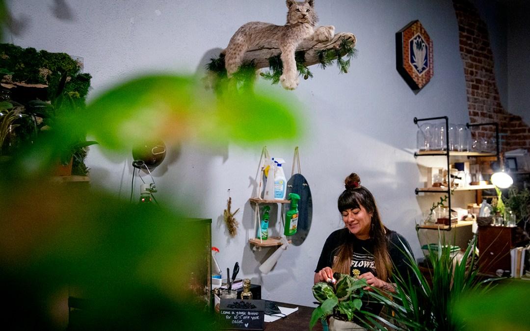 The living art of dead things at Denver's Terrorium Shop