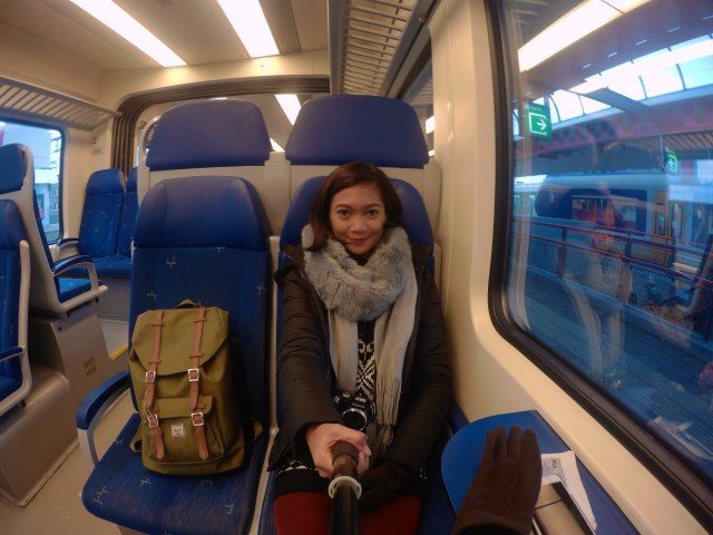 Riding a train from Zaltbommel
