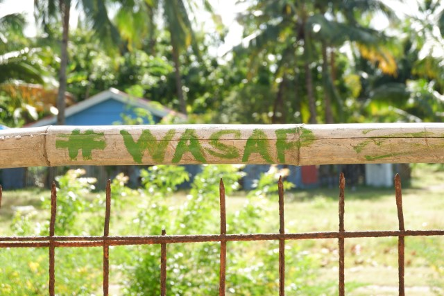 Wasap vandal on a bamboo fence in the resort