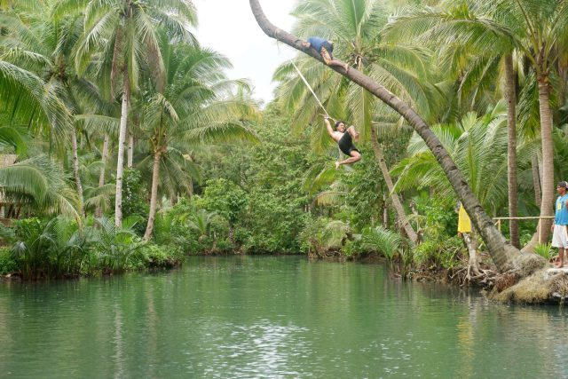 Swinging in the bent palm trees in Maasin