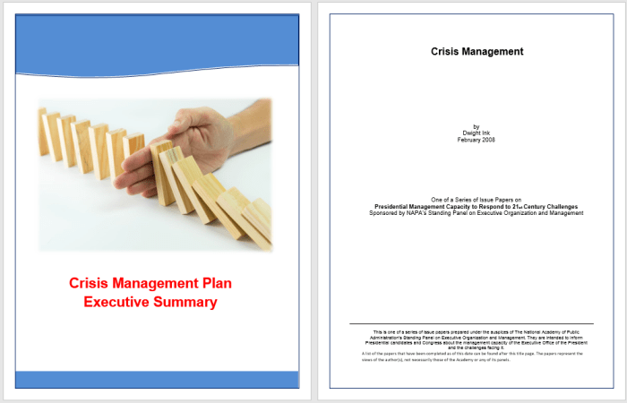 16+ Free Executive Summary Templates for Crisis Management