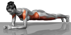 Workshop Core Stability