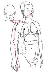 In de cursus Stoel Shiatsu leer je werken op de meridianen. Dit is een extra aanvulling ten opzichte van de cursus Stoelmassage waar je op de spieren werkt.