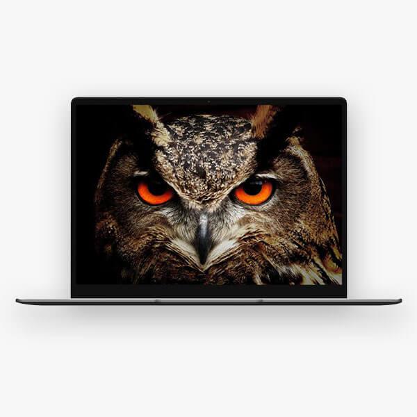 ნოუთბუქი CHUWI CoreBook X 14 inch Intel Core i5 2K 16GB DDR4 RAM + 256GB SSD