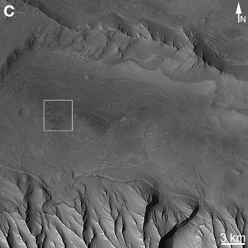 Subframe of a M R O C T X image showing the location of the fossil fans identified in M G S M O C images in Melas Chasma.