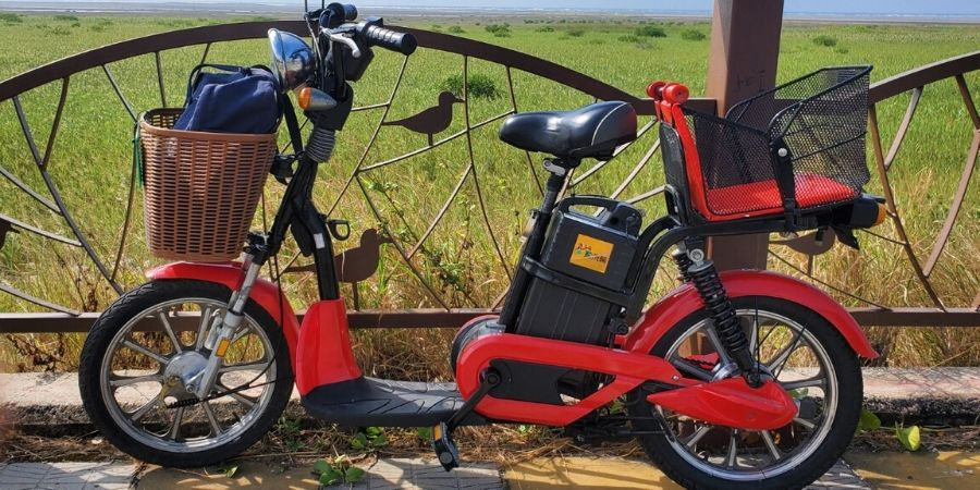 Renting a single electric bike could be the best part of your day at Gaomei Wetlands.