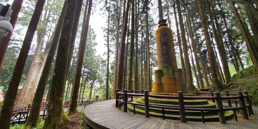 The Pagoda of the Tree Spirit is built in the middle of the thousand-year-old cypress tree forest near Ciyun Temple.
