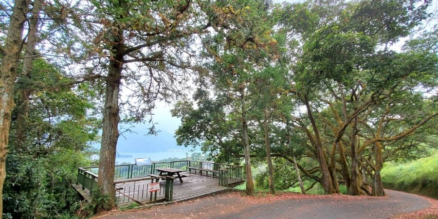At the halfway point of Mt Maolan Trail, there is a viewing platform overlooking the tea farms and mountains.
