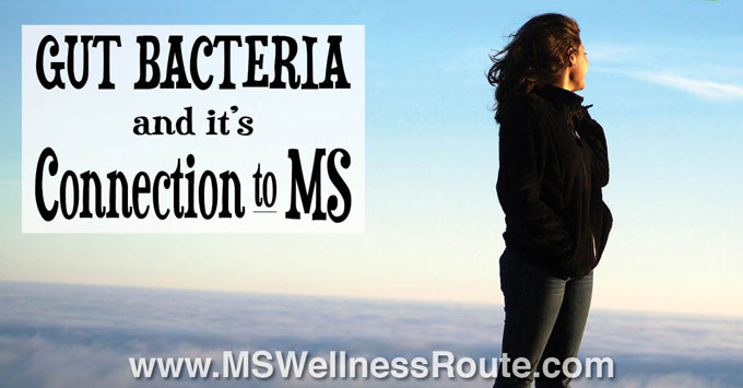 Gut Bacteria and it's Connection to MS
