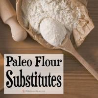 Paleo Flour Substitutes