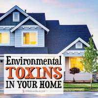Environmental Toxins In Your Home