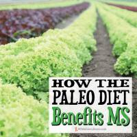 How The Paleo Diet Benefits MS