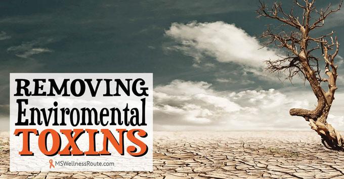 Removing Enviromental Toxins