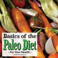 Basics of the paleo diet for your health.