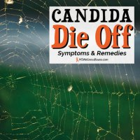 Learn how to avoid Candida die off, the symptoms and remedies.