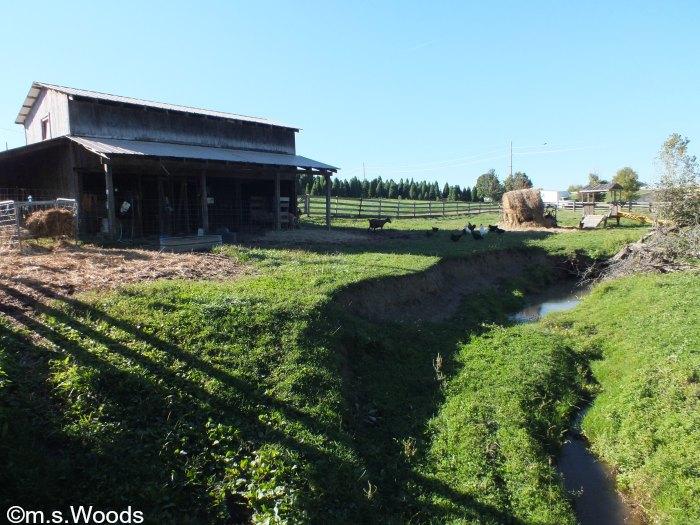 stony-creek-farm-noblesville