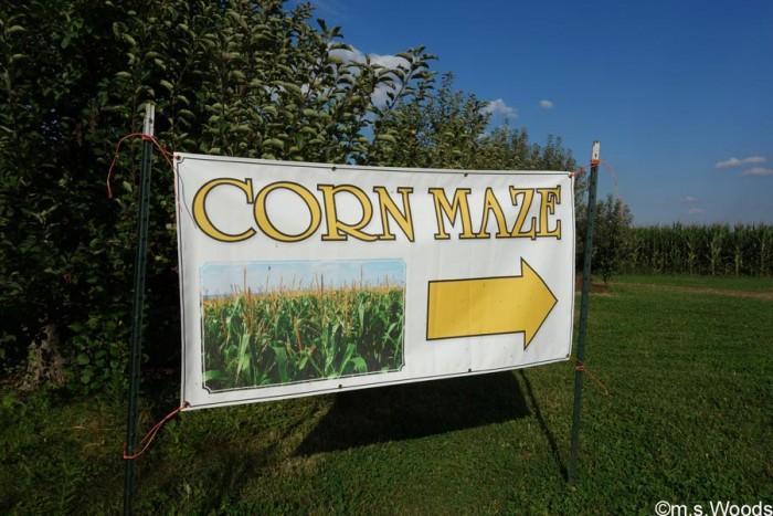 corn-maze-beasleys-orchard-danville-indiana