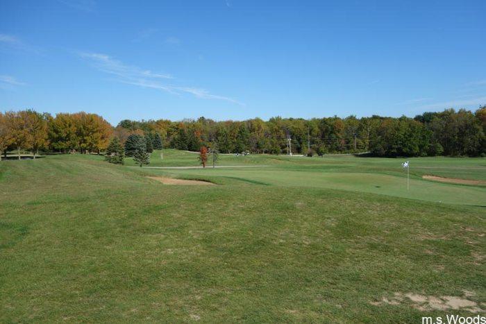 west-chase-golf-club-green-brownsburg