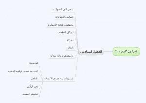 خرائط ومفاهيم احياء اول ثانوي فصلي