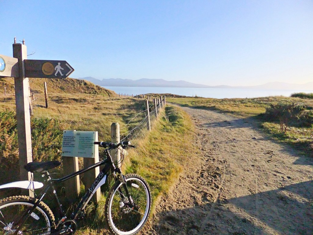 Coed Niwbrch - Newborough Forest Mountain Biking