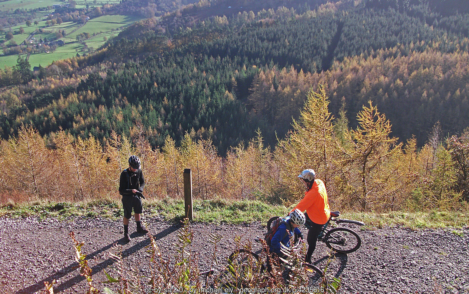 Whinlatter Mountain Bike Centre