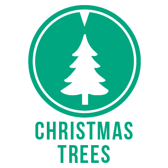 Christmas trees icon