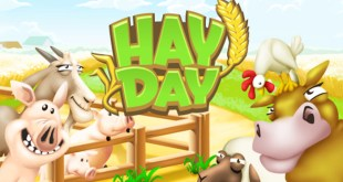 download-hay-day-for-android-ios-phones-for-free