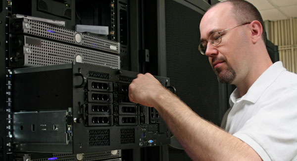 Network administrator on the job