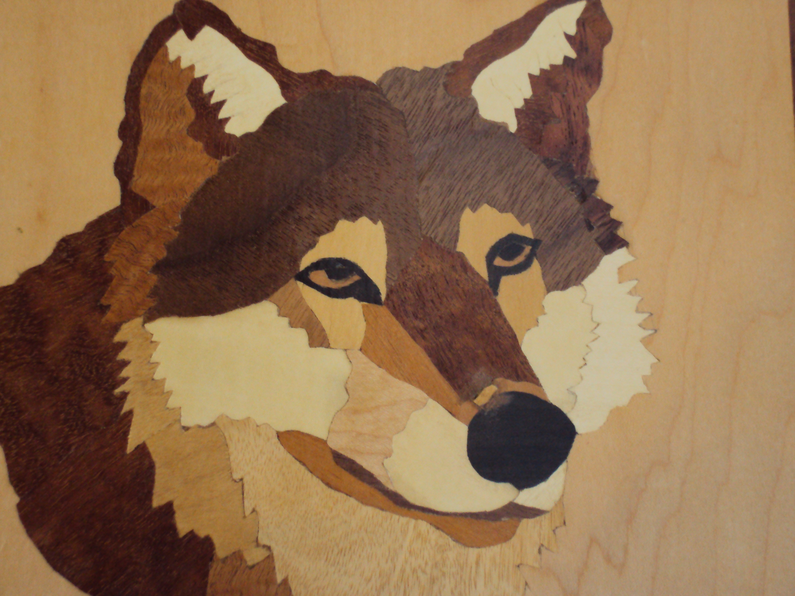 Asheville Art Gallery Contemporary Mountain Crafts