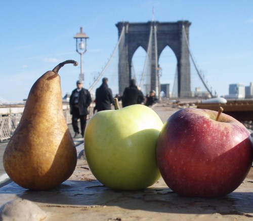 Pear and apples from the Park Slope Indoor Farmers Market, photographed on the Brooklyn Bridge (from SeasonalChef.com)