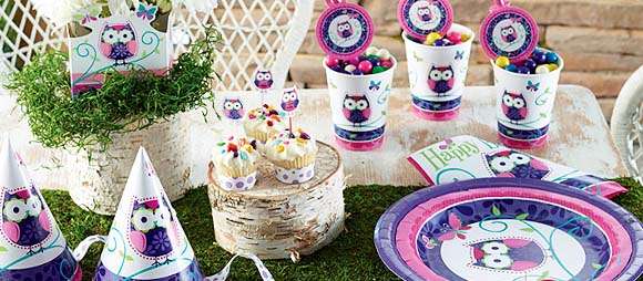 Owl Pal Birthday Party Supplies For Girls Birthday Themes At Mtrade