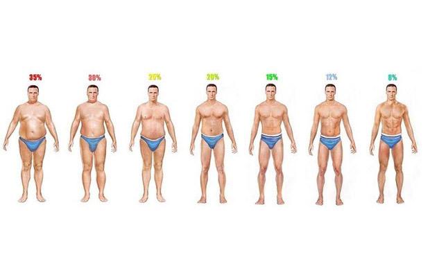 Vücut Yağları Bölgesel incelme